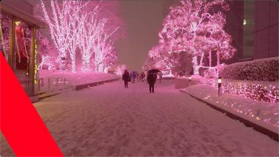 日本风景4k视频